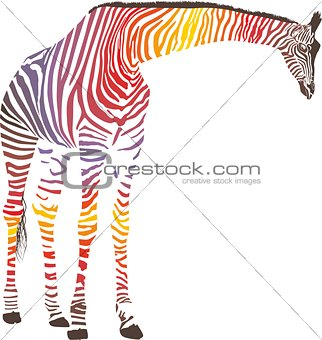 Abstract giraffe with zebra skin