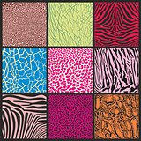 Abstract set of camouflage African