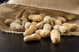 Peanuts in shell in a jute cloth bag