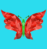 Polygon butterfly image