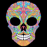 floral skull on black background.