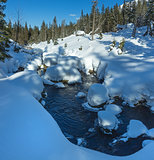 Small mountain stream with snowdrifts.