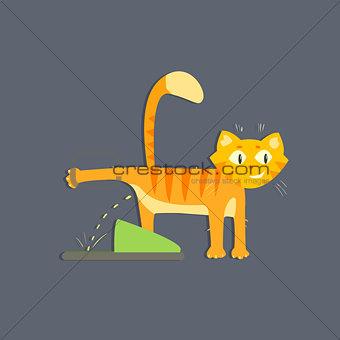 Cat Peeing Image
