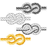 Rope knots in full-color, textured and contour drawings
