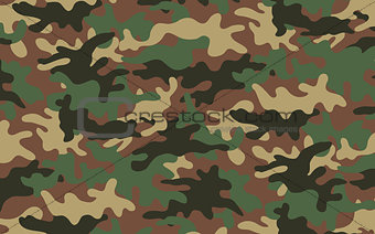 Camouflage texture 2