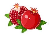 Couple juicy ripe pomegranate fruit stylized leaf