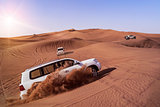 Desert Safari with SUVs