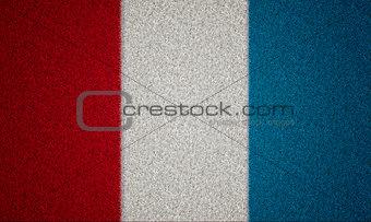 France Flag Grass
