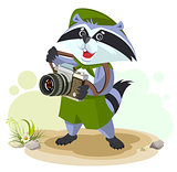 Scout raccoon with camera