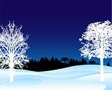 Winter landscape in the night