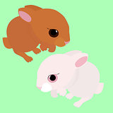 rabbit,  white and brown cartoon animal isolated