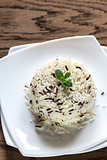 White and wild rice portion