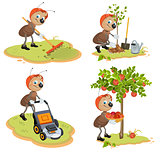 Set Ant Gardener