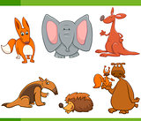 cartoon wild animals set