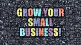 Grow Your Small Business in Multicolor. Doodle Design.