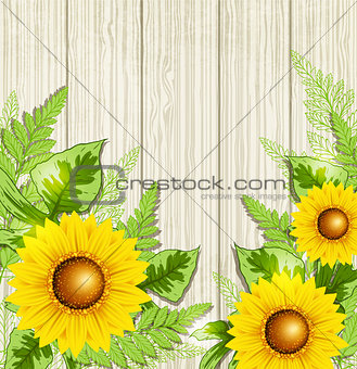 Green leaves and sunflowers