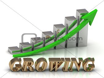 GROWING- inscription of gold letters and Graphic growth