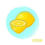 Vector lemon illustrations