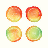 Vector watercolor stains, hand drawn doodle elements. Hand painted circles set.