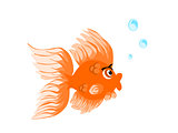 Cute Gold Fish with Bubbles