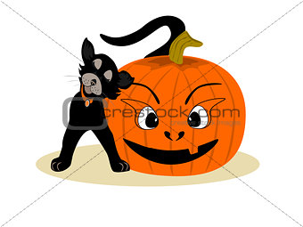 Black Friendly Cat with Pumpkin Face
