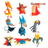 Super Hero Animals Collection