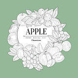 Apple Set Vintage Sketch