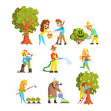 Collection of Fruit Farm Illustrations
