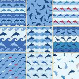sea dolphin pattern