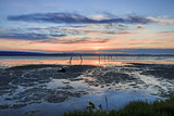 Sunset in San Francisco Bay from Coyote Hills Regional Park, Fremont, California