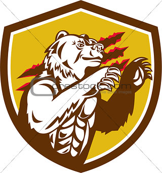 California Grizzly Bear Smirking Claw Marks Crest Retro