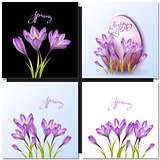 Set of vector flowers and spring lettering