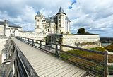 Saumur castle on Loire river (France) spring view.