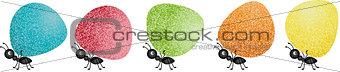 Ants carrying gumdrops