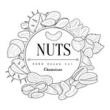 Nuts Collection Vintage Sketch