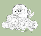 Vegetables Collection Vintage Sketch