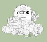 Vegetables Collection Vintage Sketch