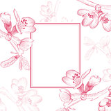 Vintage Cherry Blossom Flower Border
