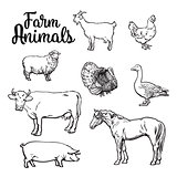 Set of farm animals on the white background