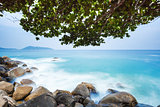 Beach with Boulders and Deciduous tree
