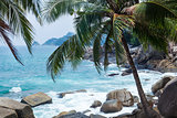 Coconut palms, Rocks and Sea in Phuket