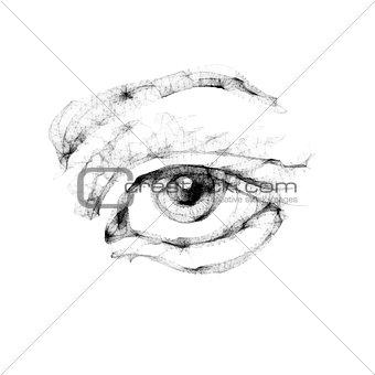 Sketch of female eye