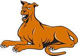 Mastiff Dog Mongrel Barking Sitting Cartoon