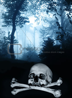 Skull and bones in the dark foggy forest