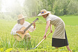 music and work in vegetable garden