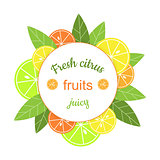 Vector round frame with citrus.