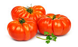 Ripe red tomatoes Timento.