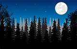 Wood moon in the night