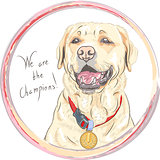 vector dog breed Labrador Retriever champion