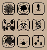 Biology icon set